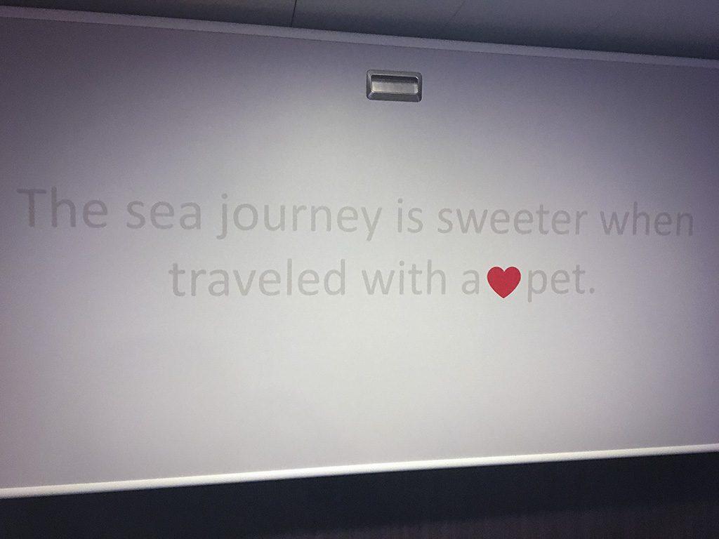 Spruch auf einem Klappbett auf der Finnmaid von Finnlines.