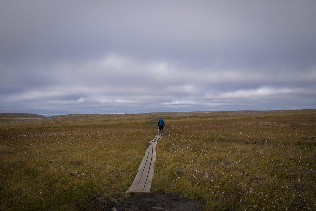 Duckboard auf dem Weg zum Knivskjellodden