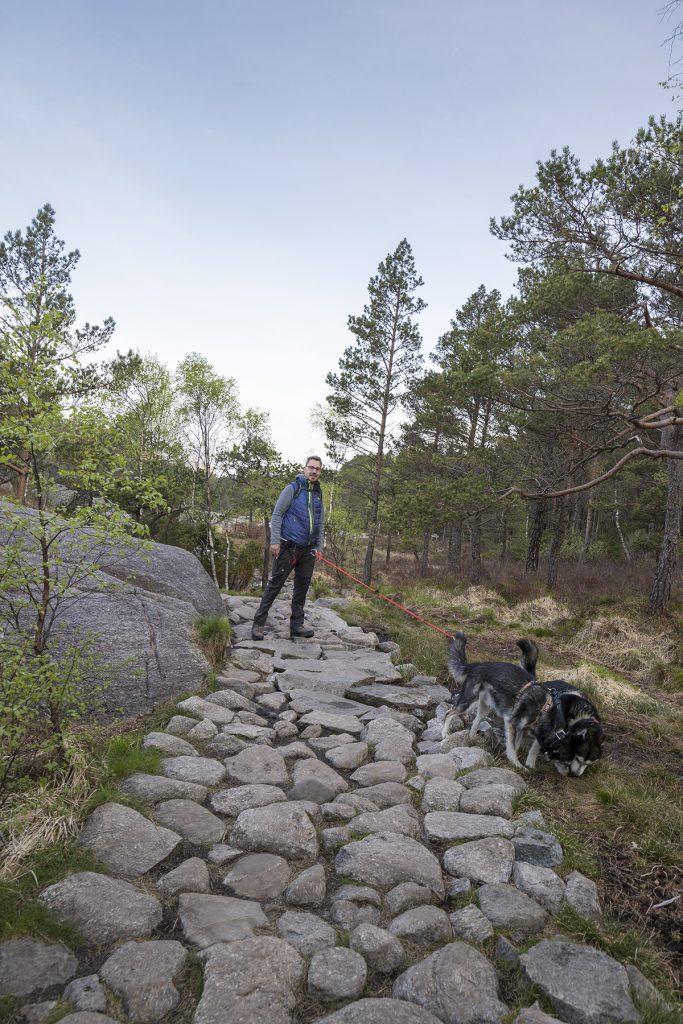 Der Wanderweg zum Preikestolen besteht überwiegend aus Steinen.