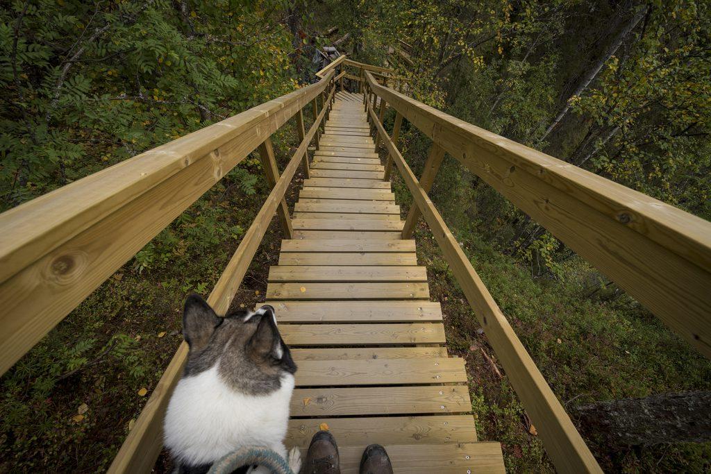 Vom Aussichtspunkt Kallioportti führen 250 Stufen hinab.