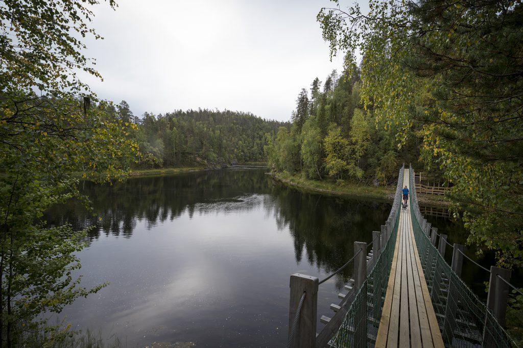 Die Hängebrücke führt über den Fluss Harrisuvanto.