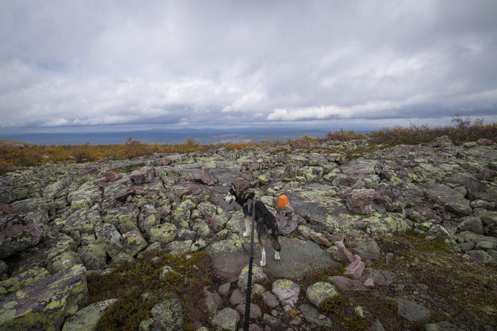 Der Ausblick vom Felsplateau lässt den Blick in die Ferne schweifen.