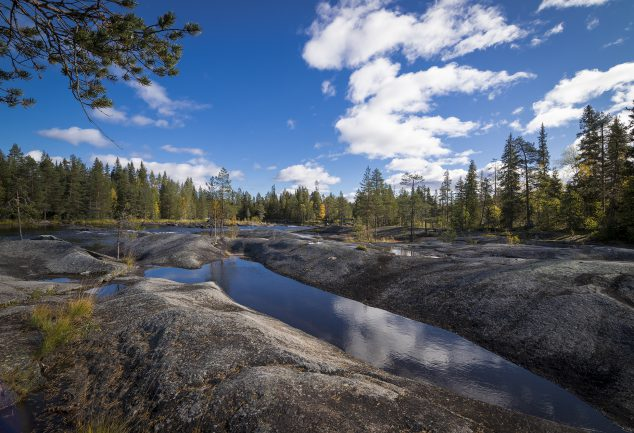 Mardseleforsen Naturreservat