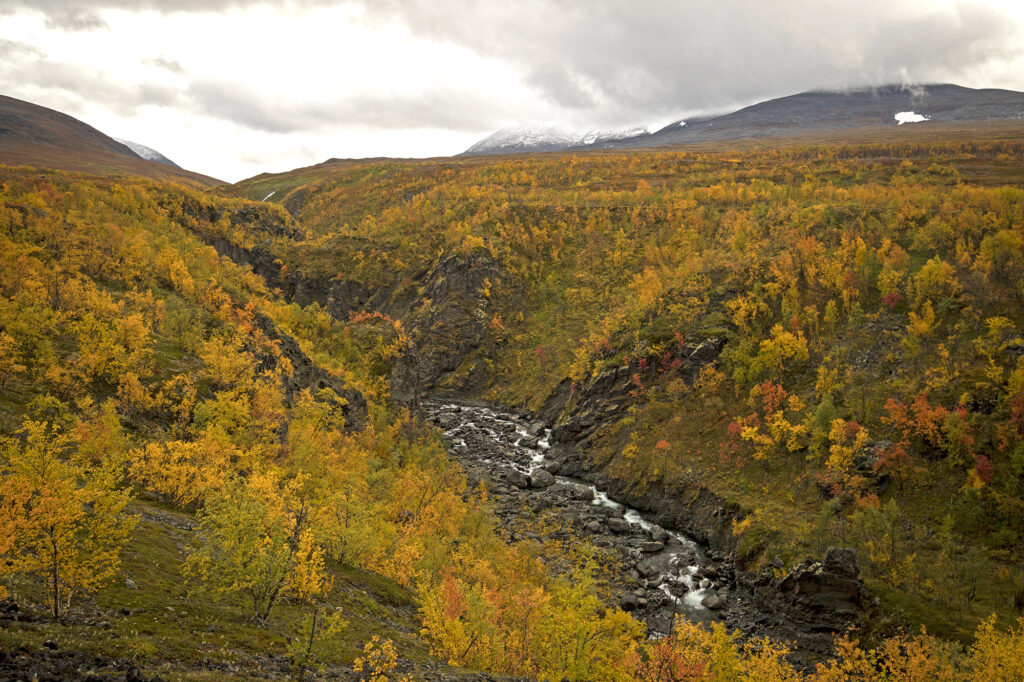 Canyon im Absiko-Nationalpark